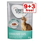 12 x 85g Concept for Life Wet Cat Food - 9 + 3 Free!*