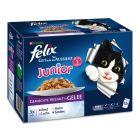 """12 x 100 g Felix """"So gut wie es aussieht"""" Junior"""