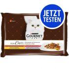 4 x 85 g Probierpaket: Gourmet A la Carte