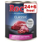 30 x 800g Rocco Classic Wet Dog Food - 24 + 6 Free!*