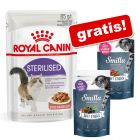24 x 85 g Royal Canin Hrană umedă  + 2 x 50 g Smilla Soft Sticks GRATIS