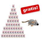 48 x 85 g Royal Canin Pliculețe pisici + șoricel Trixie cu iarba mâței gratis!