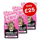 3 x 2kg Burns Original Chicken & Brown Rice Adult Dry Cat Food - Only £25!*