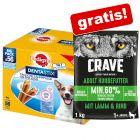 112 x Pedigree Dentastix + 1 kg Crave granule Adult jehněčí & hovězí zdarma!