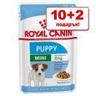 10 + 2 подарък! 12 x 85 г Royal Canin Mini консервирана храна