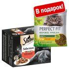 Сухой корм в подарок! 96 x 85 г Мегаупаковка Sheba в пакетиках