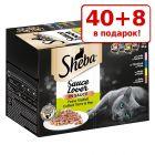 40 + 8 в подарок! 48 x 85 г Sheba влажный корм для кошек