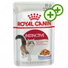 2x zooPisteitä: Royal Canin kissanruoka 24 x 85 g