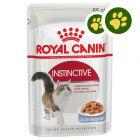 2x zooPisteitä: Royal Canin -säästöpakkaus 24 x 85 g