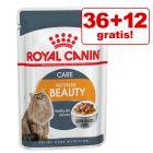 36 + 12 zdarma! 48 x 85 g Royal Canin