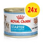 Zestaw Royal Canin Starter Mousse Mother & Babydog, 24 x 195