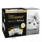 Zestaw Miamor Ragout Royale, 12 x 100 g