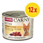Zestaw mieszany Animonda Carny Kitten, 12 x 200 g