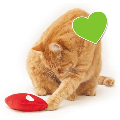 zoolove Wellness Heart Cat Toy