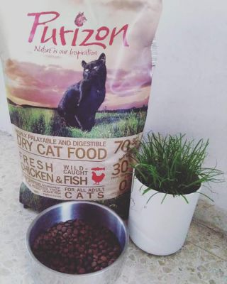 Purizon Adult Chicken and Fish