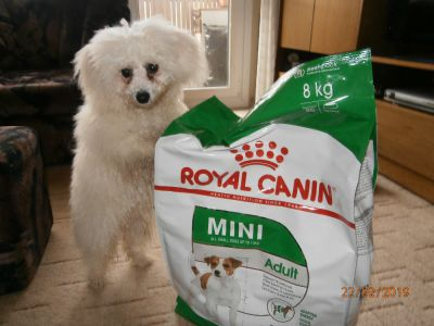 Dejte Bare Penize a Koupi Royal Canin Mini Adult