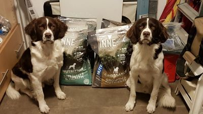Jarno and Joppe with their favorite kibble