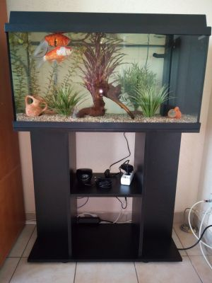 Ensemble aquarium sous-meuble Juwel Primo 110 LED