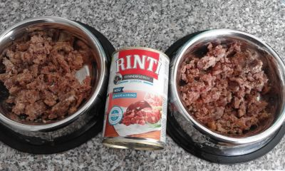 RINTI Junior mit Rind