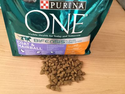 Purina ONE Hairball