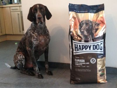 Happy Dog Canada
