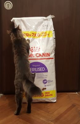 Royal canin steril