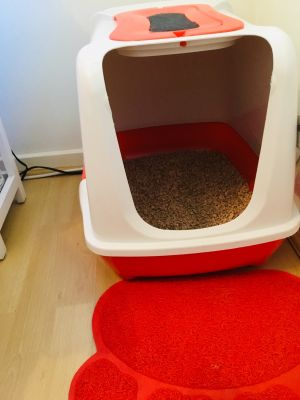 The best litter box ever