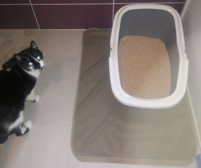 Canadian Litter box mat
